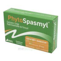 Phytospasmyl Caps B/60 à GRENOBLE