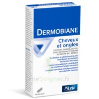 Pileje Dermobiane Cheveux & Ongles 40 Gélules à GRENOBLE