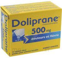 DOLIPRANE 500 mg Poudre pour solution buvable en sachet-dose B/12 à GRENOBLE