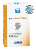 Ergyfosforyl Caps B/60 à GRENOBLE