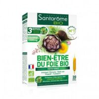Santarome Bio Bien-être Du Foie Solution Buvable 20 Ampoules/10ml à GRENOBLE