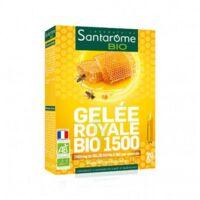 Santarome Bio Gelée royale 1500 Solution buvable 20 Ampoules/10ml à GRENOBLE