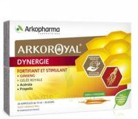 Arkoroyal Dynergie Ginseng Gelée Royale Propolis Solution Buvable 20 Ampoules/10ml à GRENOBLE