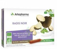 Arkofluide Bio Ultraextract Radis Noir Solution Buvable 20 Ampoules/10ml à GRENOBLE