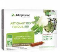 Arkofluide Bio Ultraextract Artichaut Fenouil Solution Buvable 20 Ampoules/10ml à GRENOBLE