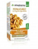 Arkogélules Fenugrec Bio Gélules Fl/40 à GRENOBLE