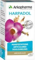 Arkogelules Harpagophyton Gélules Fl/150 à GRENOBLE