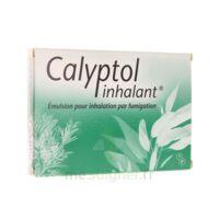 CALYPTOL INHALANT, émulsion pour inhalation par fumigation à GRENOBLE
