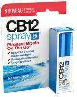 CB 12 Spray haleine fraîche 15ml à GRENOBLE
