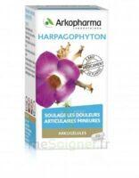 Arkogelules Harpagophyton Gélules Fl/45 à GRENOBLE
