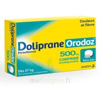 Dolipraneorodoz 500 Mg, Comprimé Orodispersible à GRENOBLE