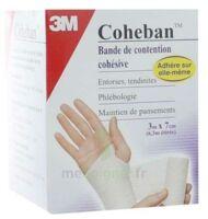 Coheban, Blanc 3 M X 7 Cm à GRENOBLE