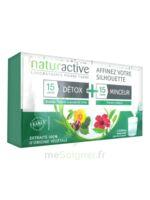 Naturactive Détox Stick Fluide 15 Sticks + Minceur Stick Fluide 15 Sticks à GRENOBLE