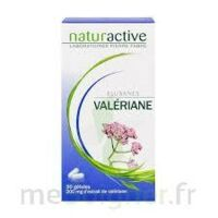 ELUSANES VALERIANE 200 mg, gélule Pilul/30 à GRENOBLE
