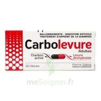 Carbolevure Gélules Adulte Plq/30 à GRENOBLE