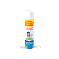 Clément Thékan Solution insecticide habitat Spray Fogger/300ml à GRENOBLE