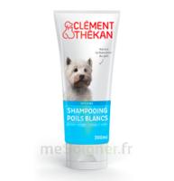 Clément Thékan Shampooing Poils Blancs T/200ml à GRENOBLE