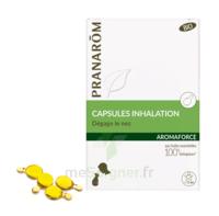 Aromaforce Caps inhalation bio B/15 à GRENOBLE