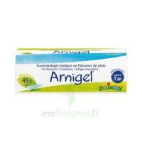 Boiron Arnigel Gel T(alumino-plastique)/45g à GRENOBLE