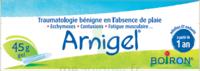 Boiron Arnigel Gel T/45g à GRENOBLE